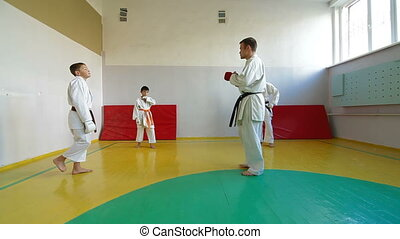 Martial Arts sport training - coach at the gym teaches...