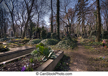 old graveyard in Prag - historic cemetary Olsany in Prag,...