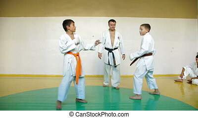 Martial arts sparring - Martial arts instructor training...