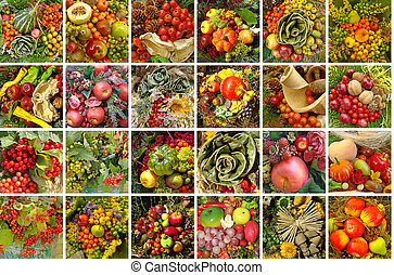 harvest collage - composition with autumnal decorations
