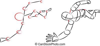 Vector - Human body