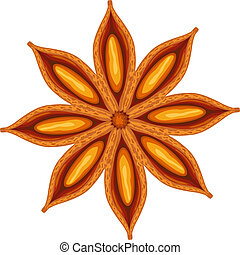 Anise. Vector illustration.