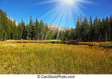 A quiet part of Yosemite Park in the early fall - A quiet...