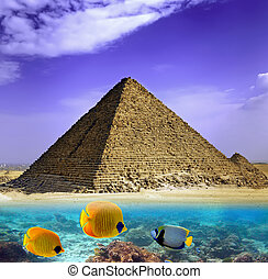 Water and Pyramids, Egypt - Water and Pyramids in Egypt