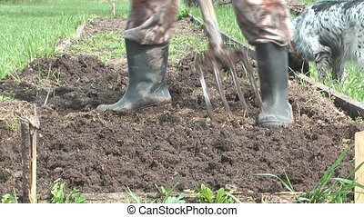 Dig up. - Man digs a flower bed in the garden pitchfork.