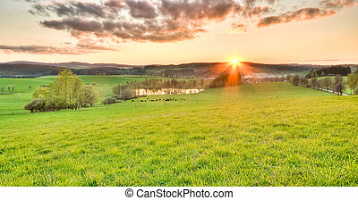 beautiful meadow during sunset