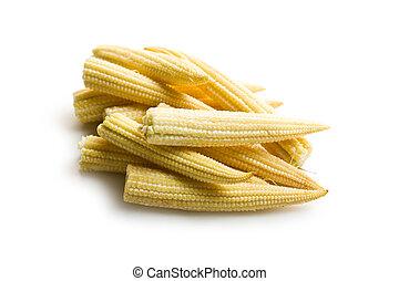 bebé, maíz, Mazorcas