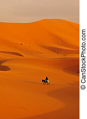 Single Bedouin traveler on donkey crossing the sand dunes of...