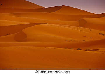 Pattern of shadows and vegetation on the sand dunes of the Sahara Desert Morocco
