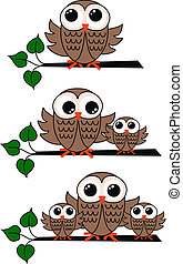 owls - three owl illustrations