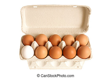 abertos, caixa, ovos