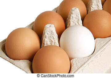 Open box with eggs isolated on the white background
