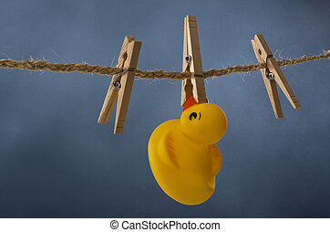 Drying Out Ducks. - Hanging rubber ducks on the cloths line.