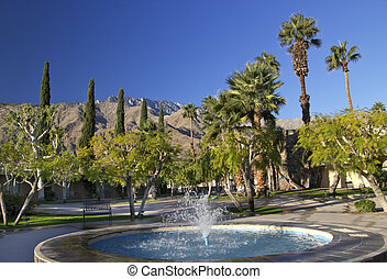 Fan Palms Trees Blue Fountain Palm Springs California...