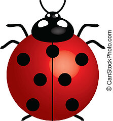 ladybird - Vector illustration of ladybird (symbol of good...