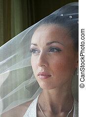 Beautiful bride in a veil - Portrait of the beautiful bride...