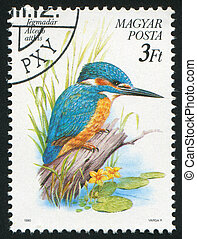 Alcedo atthis - HUNGARY - CIRCA 1990: stamp printed by...