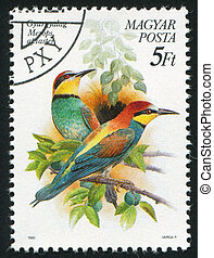 Merops apiaster - HUNGARY - CIRCA 1990: stamp printed by...