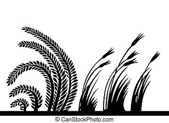 plants silhouette on white background, vector illustration