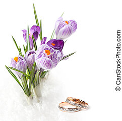 wedding rings and flowers - wedding rings and flower bouquet