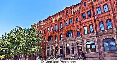 Harlem district and its typical house - New York