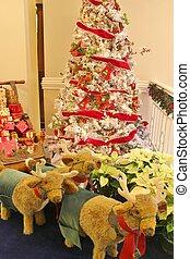 Natal, árvore, exposição, -2