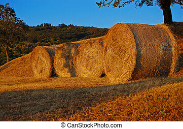 Haymaking - Italy - Hay bales in the mountains at sunset -...