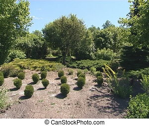 Botanical garden with lot of plants - Botanical garden with...