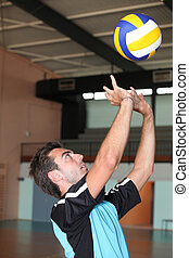 volley-ball player