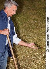 A man examining organic material