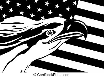 Eagle and US flag - The head of an eagle against the US flag...