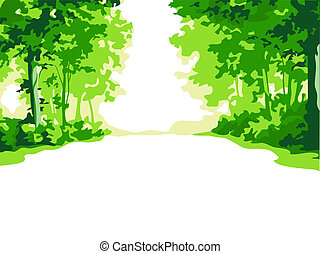 Summer forest - Green summer forest road background