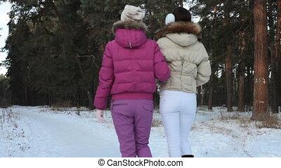 Winter forest walk