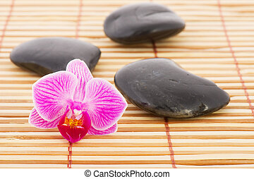 Orchid and hot stones - Pink Orchid and hot stones on bamboo