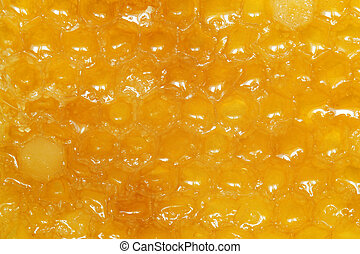 Honeycombs with honey, for backgrounds or textures