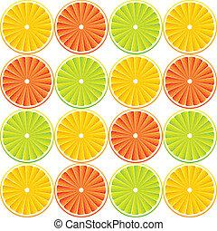 agrume, frutta, fondo, -, vettore