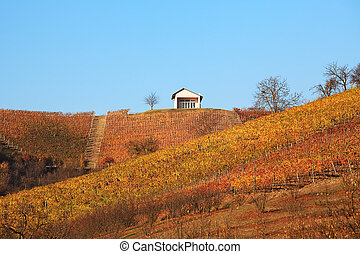 Hills and vineyards at fall. Piedmont, Northern Italy.
