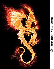 queimadura, dragão, isolado