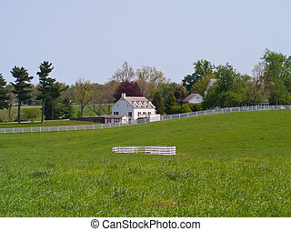 Horse Farm With Fence - Horse farm in Kentucky with pasture...