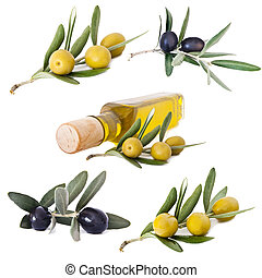 olives and oil collection, set