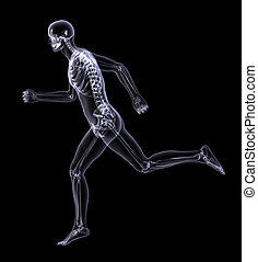 Xray Man Running Side View