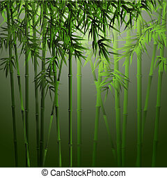 bamboo - Realistic vector bamboo.Background in asian style