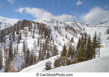 winter alpine landscape - white alpine scenery in winter