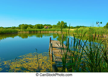 Dock and pond with cattails in sunlight with blue sky