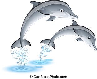 Jumping dolphins - Two jumping dolphins
