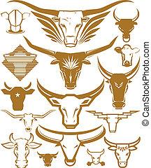 vache, taureau, tête, collection