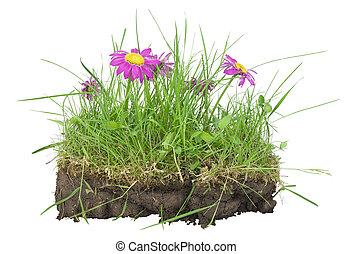 Bunch of lawn- my EARTH concept - Bunch of lawn, turf clod (...