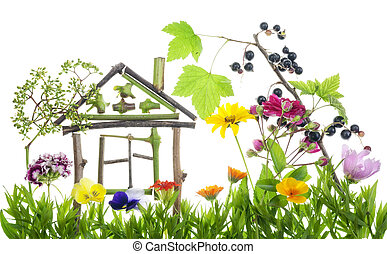 Sweet green home concept - Collage from summer flowers and...