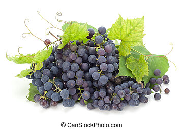 Northern Europe grapes - The red real grapes which have been...