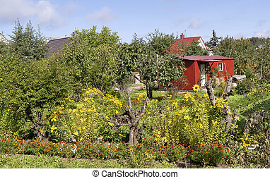 Beautiful European garden - Beautiful European lovely garden...